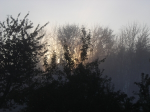 SunriseOverSalmonBrookEast