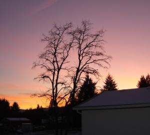 SunsetOverSBF