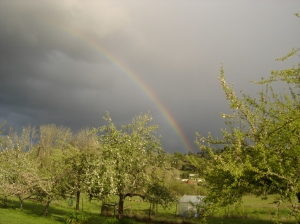 Rainbow over Salmon Brook Farm