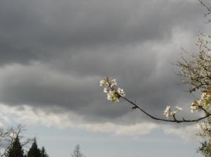 SpringSky-04022015