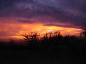 Sunrise-1-02112015