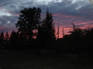 Sunset-08092105