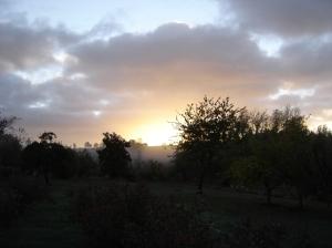 Sunrise-10112015