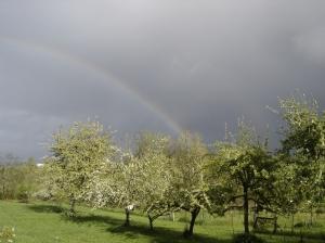 Rainbow-04142016