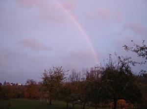 sbf-rainbow-10242016