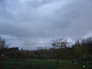 sbf-rainbow-11202016