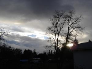 sbf-sunset-11202016