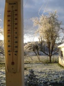 frozenspiderweb-12172016