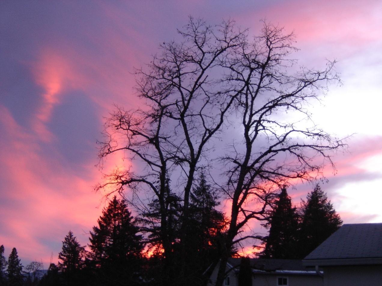 sbf-sunset-01032017