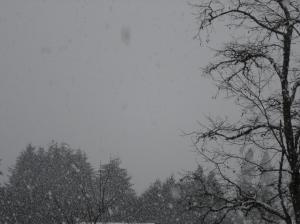 snowylandscape-3-01072017
